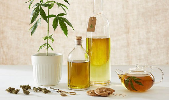 CBD oil could lower blood pressure